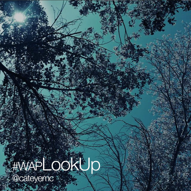 Look up for this week s weekend art project for Weekend art projects