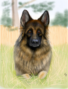 dog drawn samsunggalaxys3 digitalart