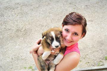puppy cute me