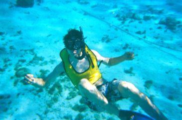 snorkeling grandcayman