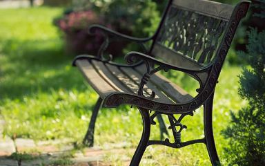 Who Come With Me Seat Here Gardan Bench Photography