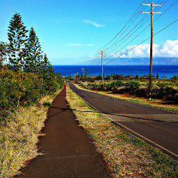road ocean maui island