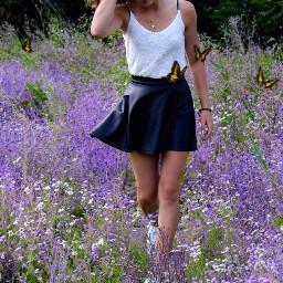 butterflies flowers purple