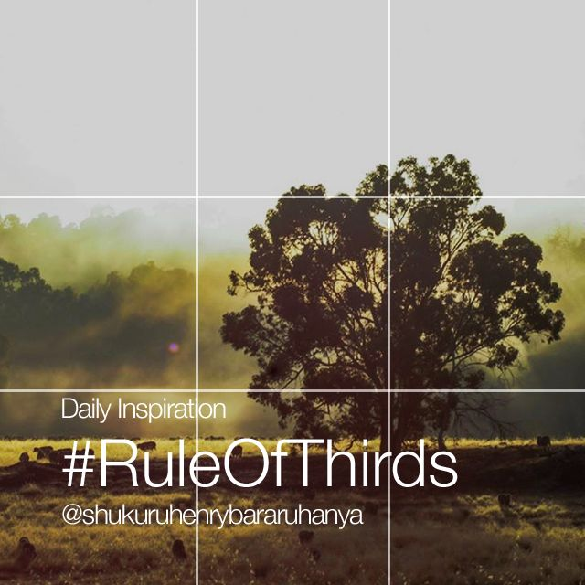 Monday Inspiration rule of thirds