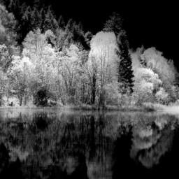 whiteandblack nature lake freetoedit