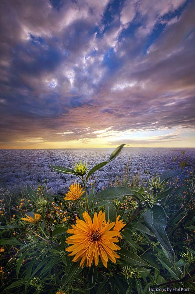 September Equinox.   #autumn #harvest #Horizon #weather #landscapephotography #sunrise #colorful #beauty #beautiful #love #hdr #nature #wisconsin